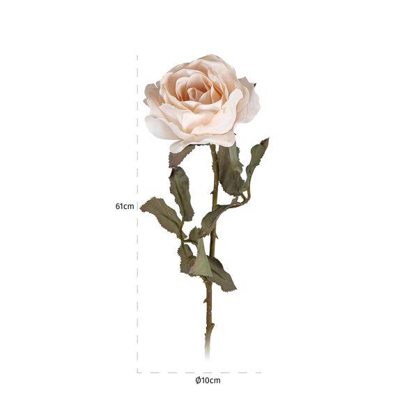 -FL-0016 - Bloem Rose Cream (12 stuks)